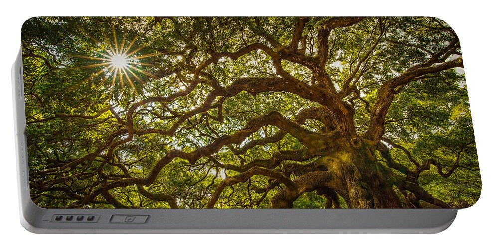 Oak Portable Battery Charger featuring the photograph Angel Oak by Serge Skiba
