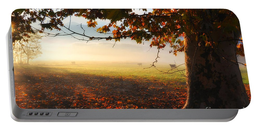 Tree Portable Battery Charger featuring the photograph Autumn Tree by Mats Silvan