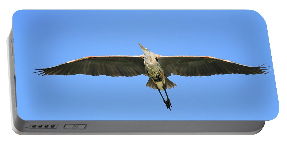 Blue Heron Portable Battery Charger featuring the photograph Beauty Of Flight by Deborah Benoit