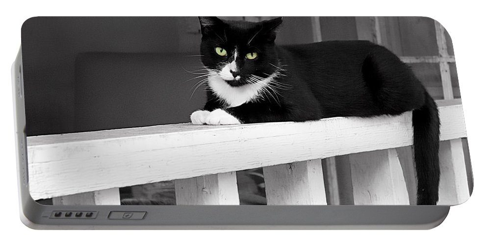 Cat Portable Battery Charger featuring the photograph Black Cat by Carlos Diaz
