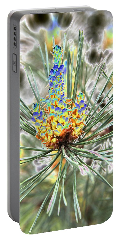 Pine Portable Battery Charger featuring the photograph Blue Shadow by Christiane Schulze Art And Photography