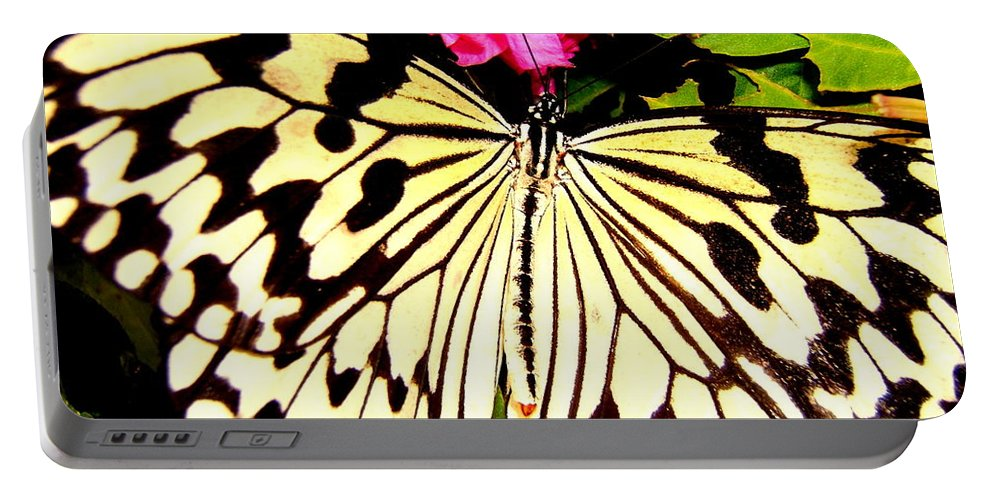 Butterfly Portable Battery Charger featuring the photograph Butterfly by Cynthia Amaral