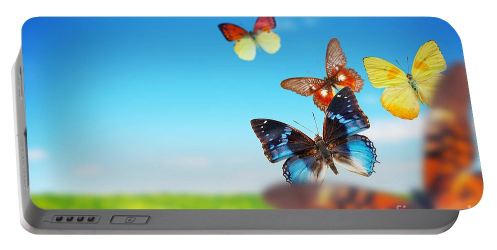 Butterfly Portable Battery Charger featuring the photograph Colorful Buttefly Spring Field by Michal Bednarek