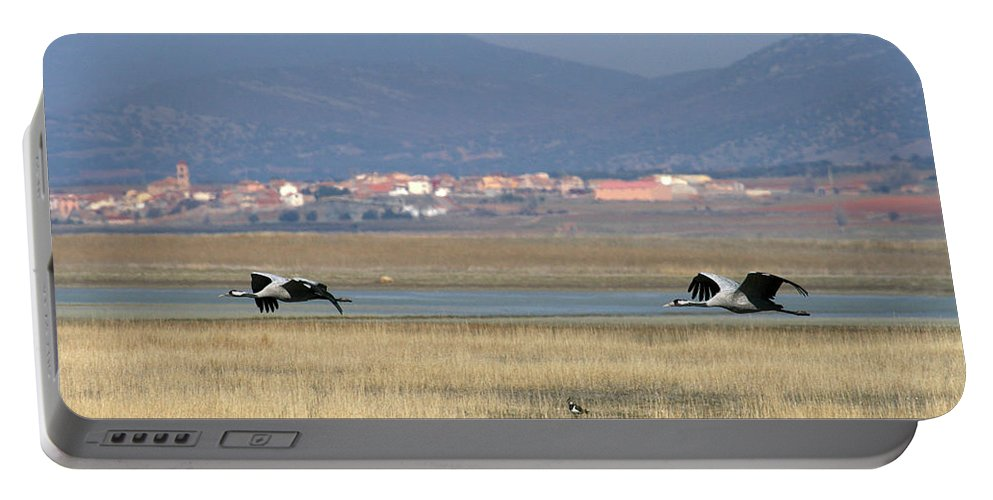 Wildlife Portable Battery Charger featuring the photograph Common Cranes At Gallocanta Lagoon by David Santiago Garcia