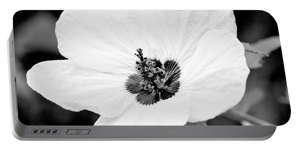 Flower Portable Battery Charger featuring the photograph Crimson-eyed Mallow by Scott Pellegrin