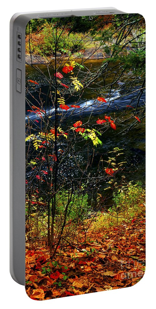 Autumn Portable Battery Charger featuring the photograph Fall Forest And River by Elena Elisseeva