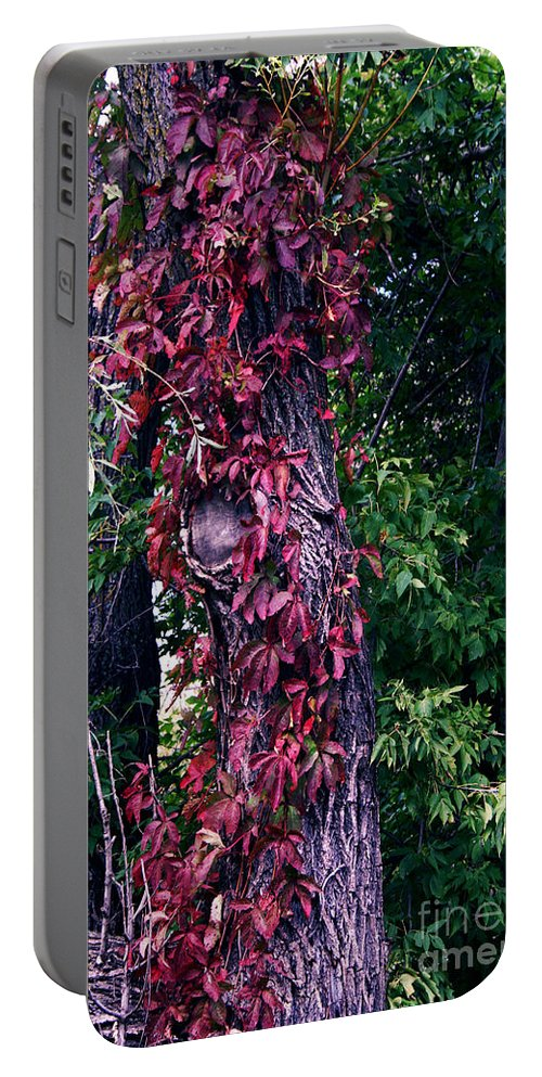 Jamie Lynn Gabrich Portable Battery Charger featuring the photograph Fanticy In Reality by Jamie Lynn