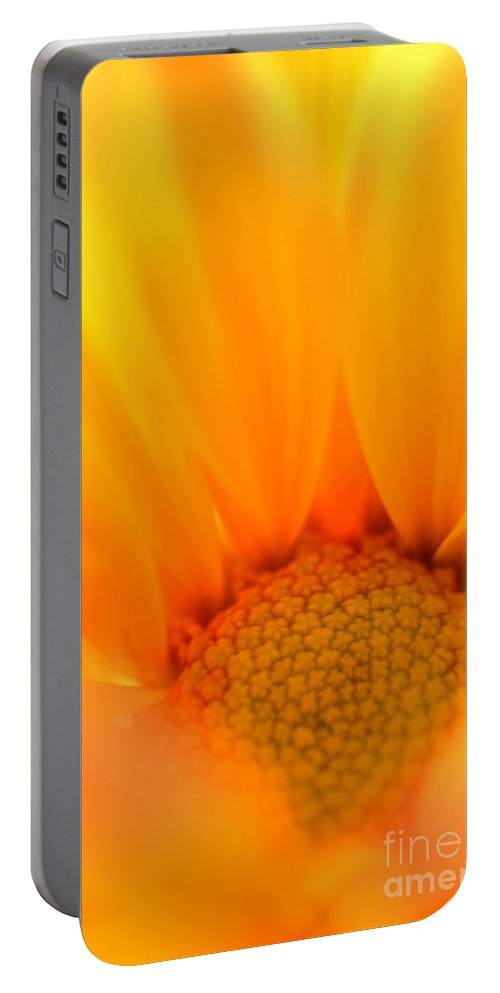 Daisy Portable Battery Charger featuring the photograph Flaming Petals by Deb Halloran