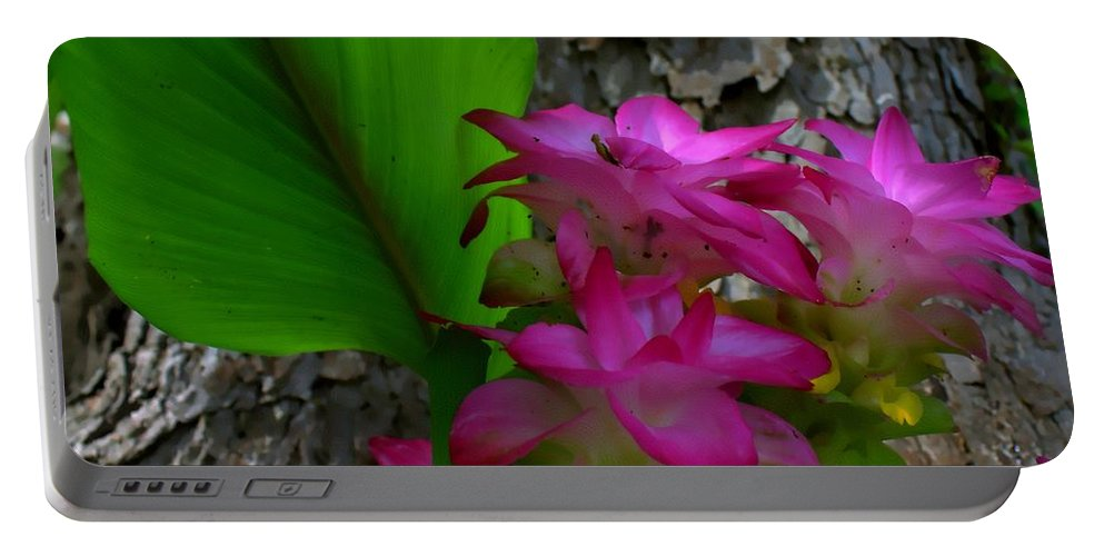 Lillies Portable Battery Charger featuring the photograph Hidden Lilly by Debra Forand
