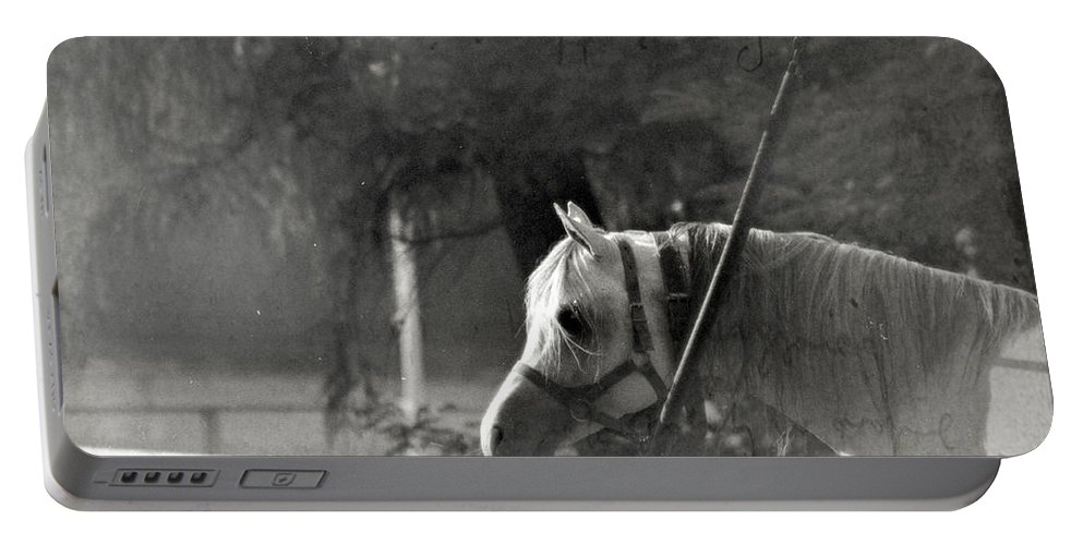 Horse Portable Battery Charger featuring the photograph In The Captivity by Angel Ciesniarska