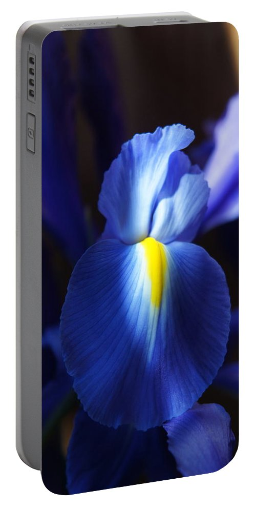Iris Portable Battery Charger featuring the photograph Iris by Megan Cohen