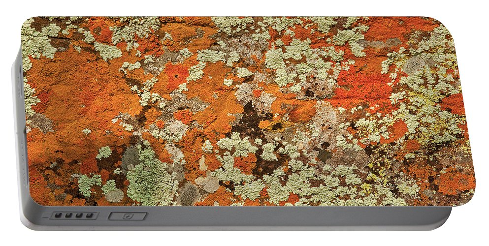 Lichen Abstract In Orange Color Portable Battery Charger featuring the photograph Lichen Abstract by Mae Wertz