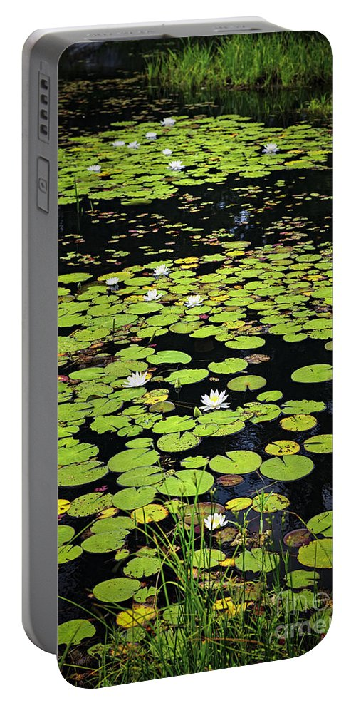 Lake Portable Battery Charger featuring the photograph Lily Pads On Dark Water by Elena Elisseeva