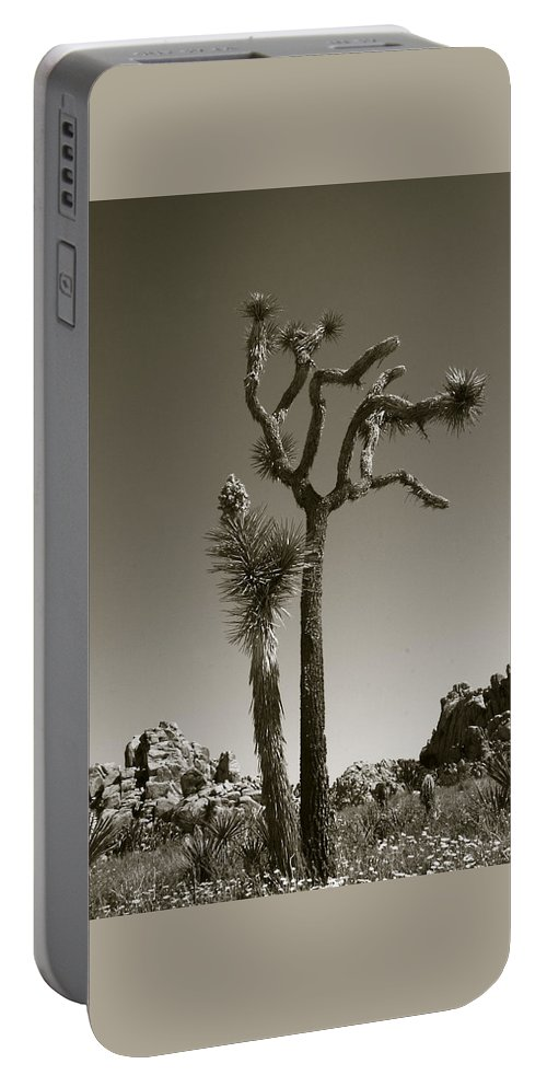 Joshua Tree Portable Battery Charger featuring the photograph Joshua Tree National Park Landscape No 2 In Sepia by Ben and Raisa Gertsberg