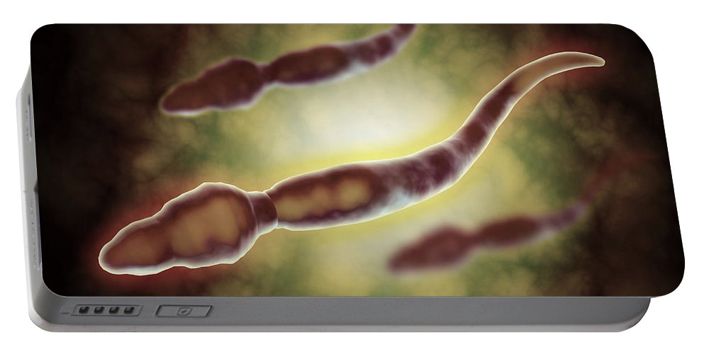 Molecular Biology Portable Battery Charger featuring the digital art Microscopic View Of Male Sperm Cells by Stocktrek Images