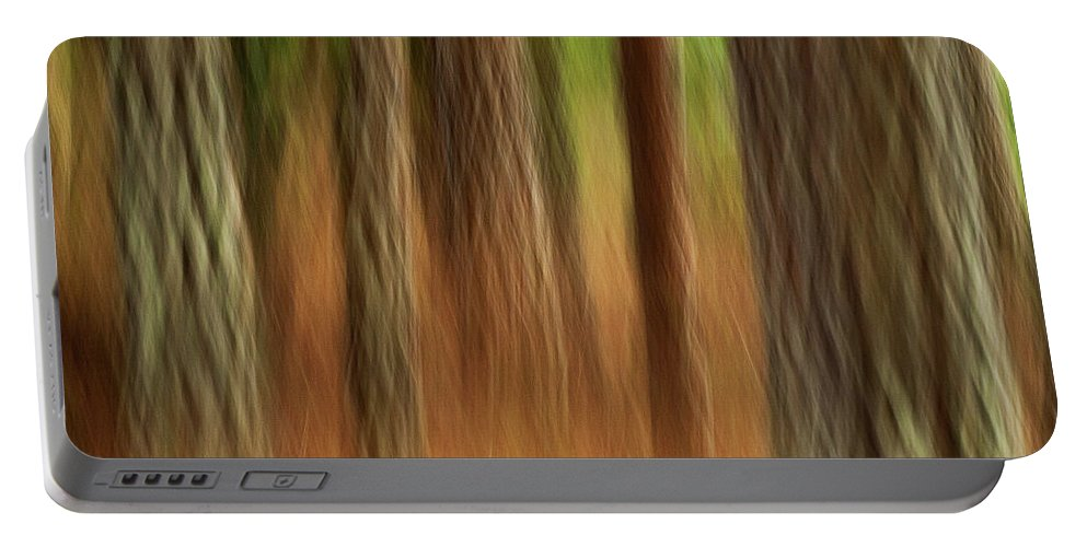 Abstract Portable Battery Charger featuring the photograph Pine Trees by Heiko Koehrer-Wagner