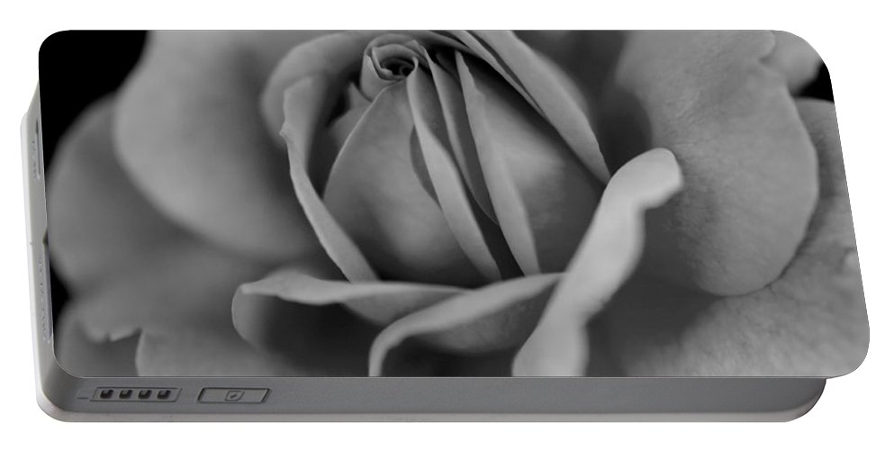 Rose Portable Battery Charger featuring the photograph Shades And Shadows by Teri Schuster