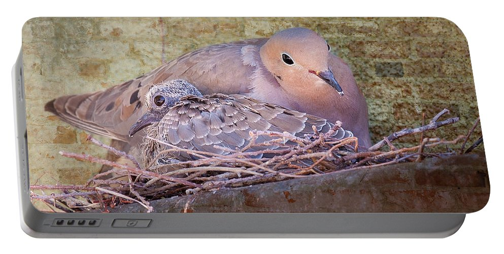 Birds Portable Battery Charger featuring the photograph Small Family by Jim Thompson