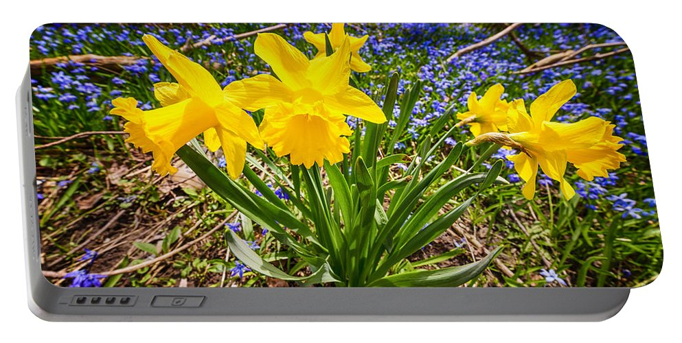 Wildflowers Portable Battery Charger featuring the photograph Spring Wildflowers by Elena Elisseeva