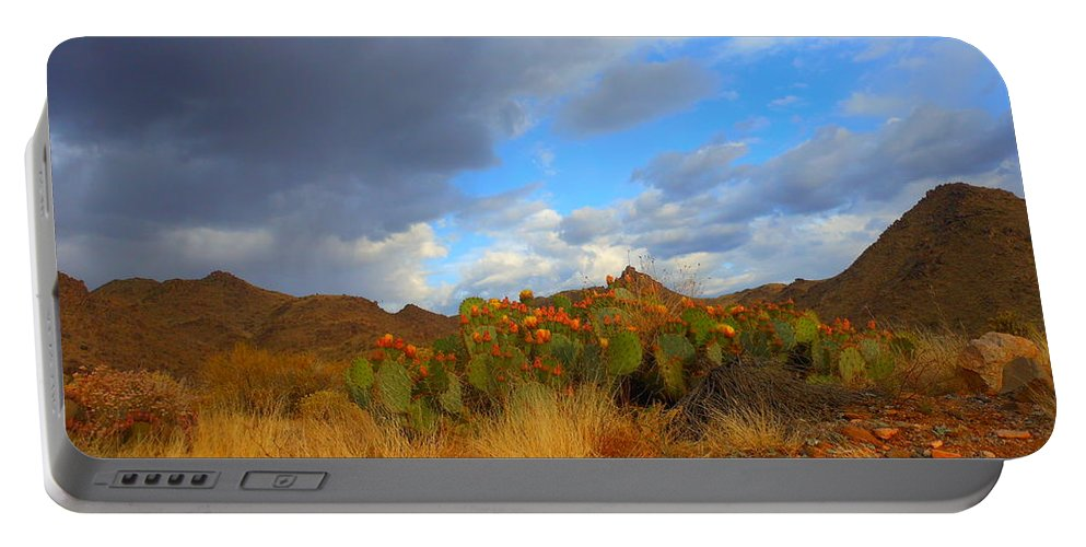 Landscape Portable Battery Charger featuring the photograph Springtime In Arizona by James Welch