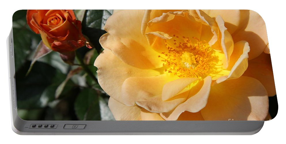 Rose Portable Battery Charger featuring the photograph Summer's Rose Love by Christiane Schulze Art And Photography