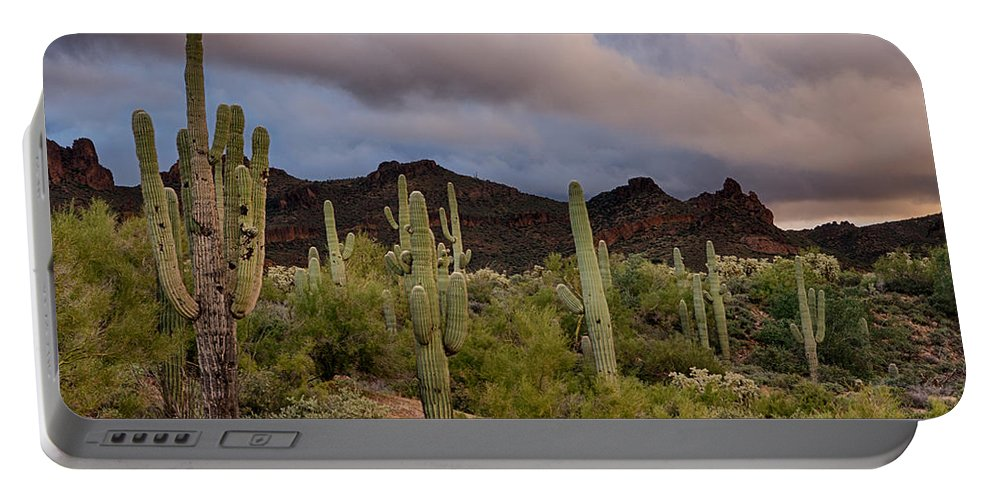Arizona Portable Battery Charger featuring the photograph The Last Light by Saija Lehtonen