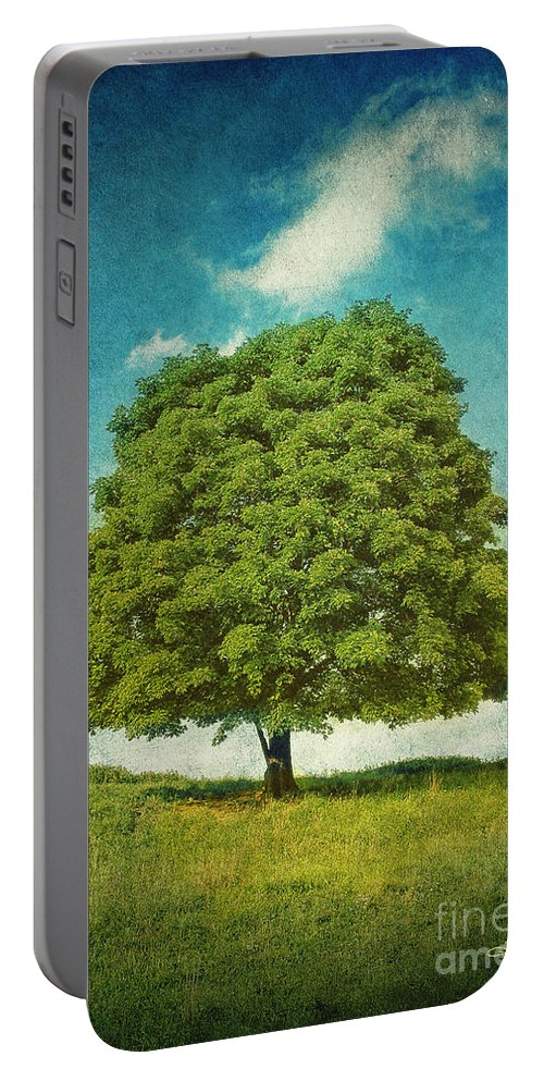 Photo Portable Battery Charger featuring the photograph Touching The Cloud by Jutta Maria Pusl