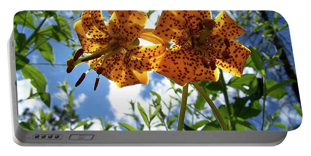 Flower Portable Battery Charger featuring the photograph Two Tigers 'n' Sky by Jamie Johnson