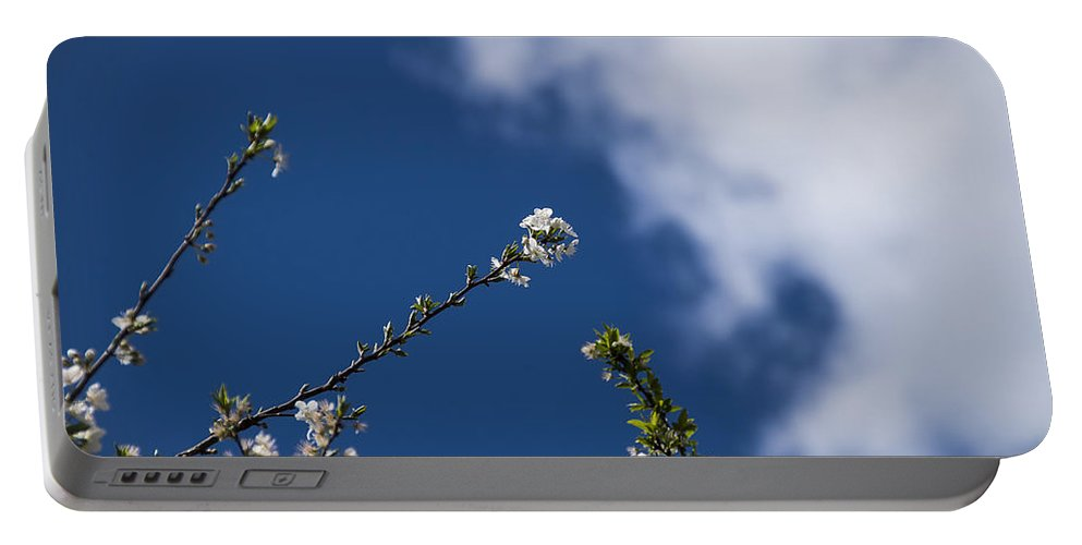Nature Portable Battery Charger featuring the photograph White Flowers by Paulo Goncalves