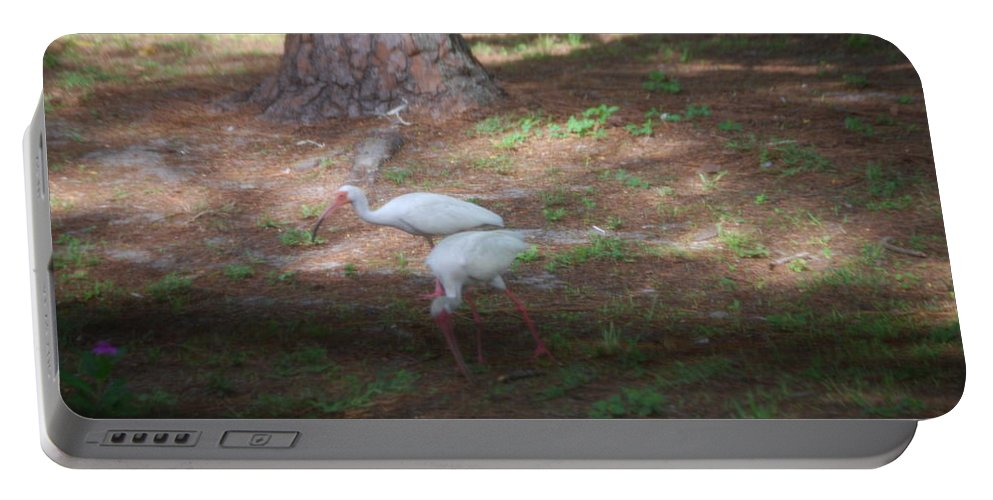 Suncoast Exterminators Portable Battery Charger featuring the photograph White Ibis by Robert Floyd