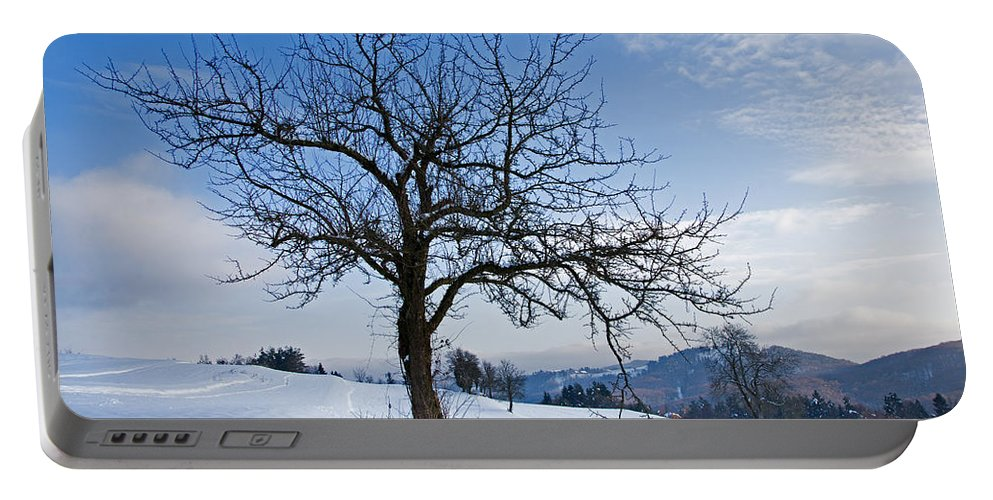 Trees Portable Battery Charger featuring the photograph Winter Landscapes by Ian Middleton