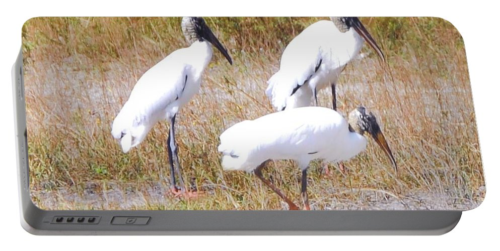 Gathering At Lakes Park In Ft.myers Portable Battery Charger featuring the photograph Wood Storks by Robert Floyd