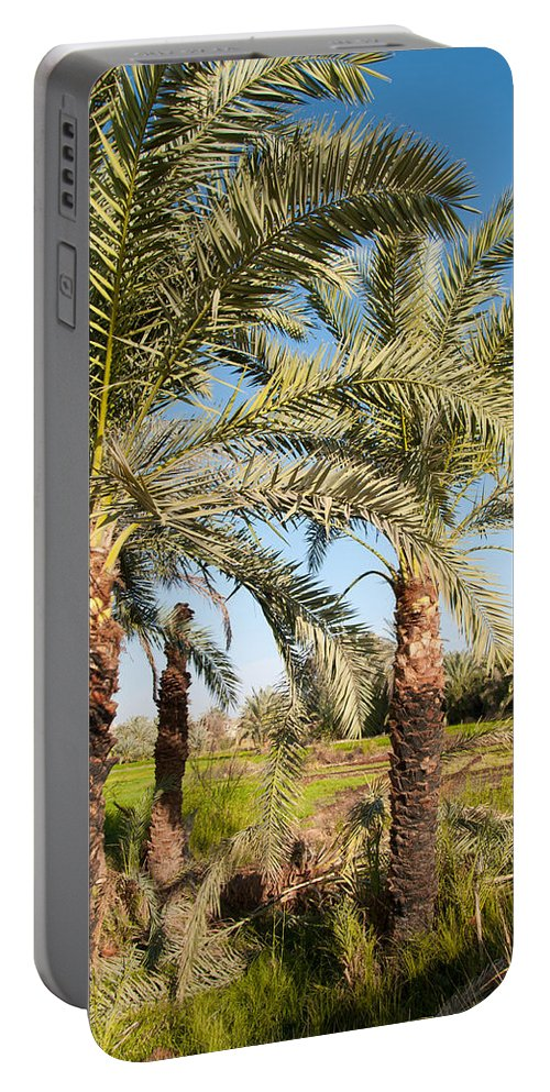 Oasis Palm Trees Portable Battery Charger featuring the digital art Dakhla by Carol Ailles