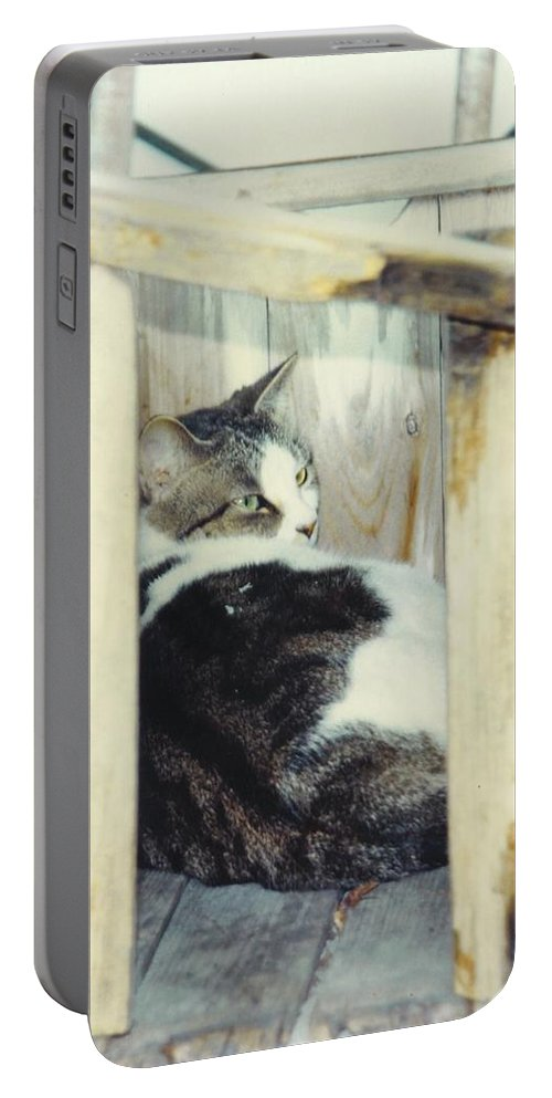 Framed By A Box Portable Battery Charger featuring the photograph Emmie by Robert Floyd