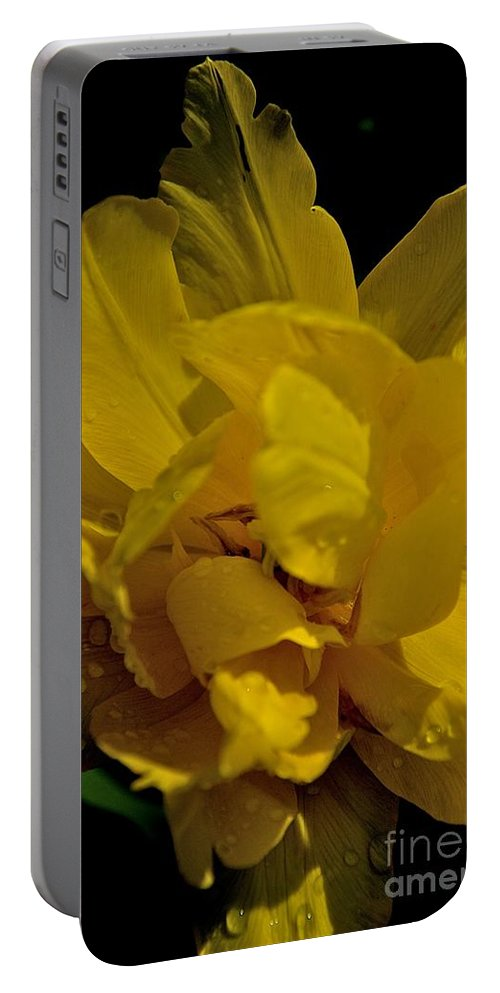 Yellow Flower Portable Battery Charger featuring the photograph Flight by Joseph Yarbrough