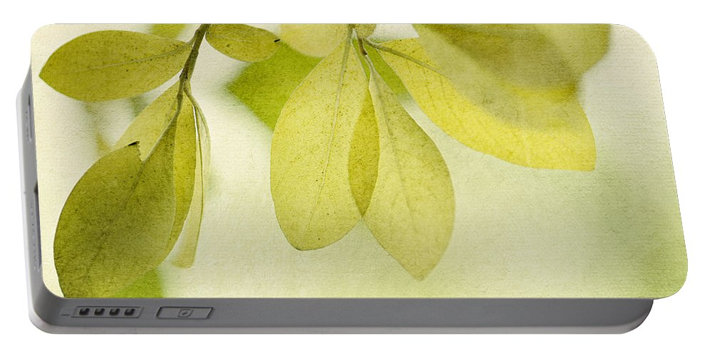 Foliage Portable Battery Charger featuring the photograph Green Foliage Series by Priska Wettstein