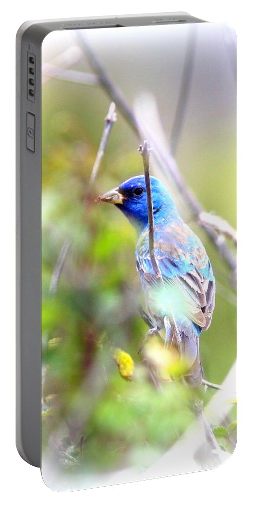 Indigo Bunting Portable Battery Charger featuring the photograph Indigo Bunting by Travis Truelove