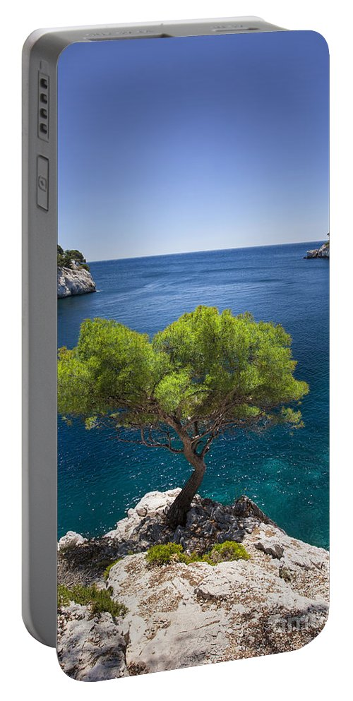 Calanque Portable Battery Charger featuring the photograph Lone Pine Tree by Brian Jannsen