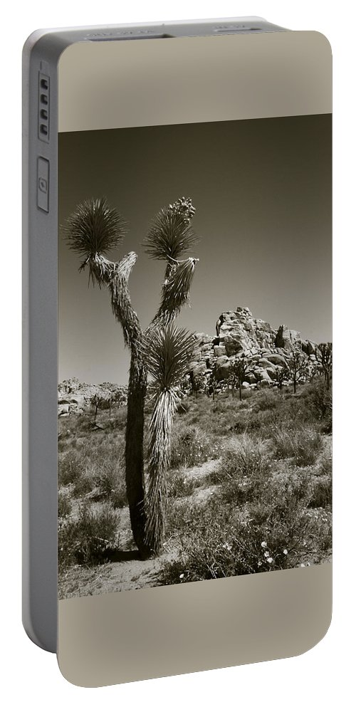 Joshua Tree Portable Battery Charger featuring the photograph Joshua Tree National Park Landscape No 3 In Sepia by Ben and Raisa Gertsberg
