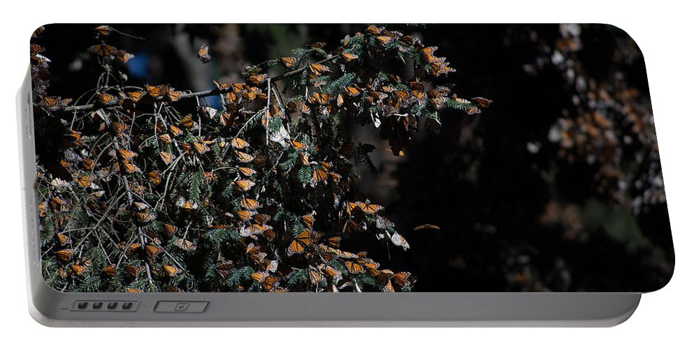 Butterflies On Trees Portable Battery Charger featuring the digital art Monarch Butterflies by Carol Ailles