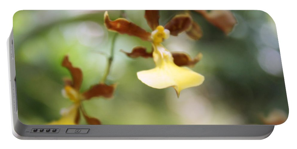Orchid Portable Battery Charger featuring the photograph Orchids Dance by Irina Davis