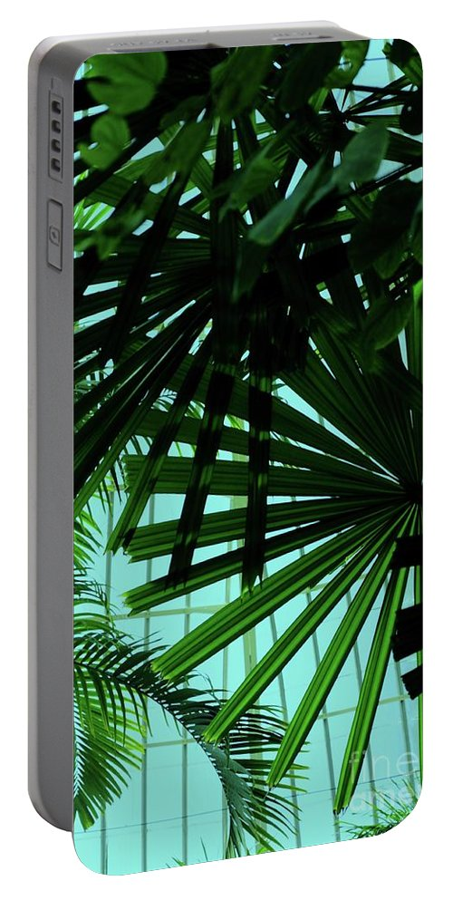Palm Portable Battery Charger featuring the photograph Palm Trees by Kathleen Struckle