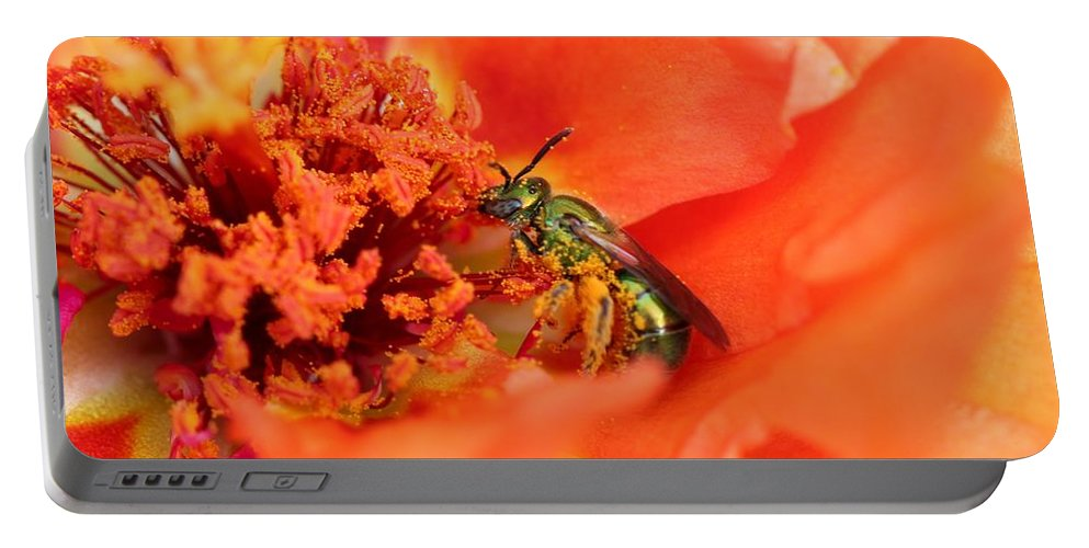 Mccombie Portable Battery Charger featuring the photograph Portulaca Named Sundial Tangerine by J McCombie