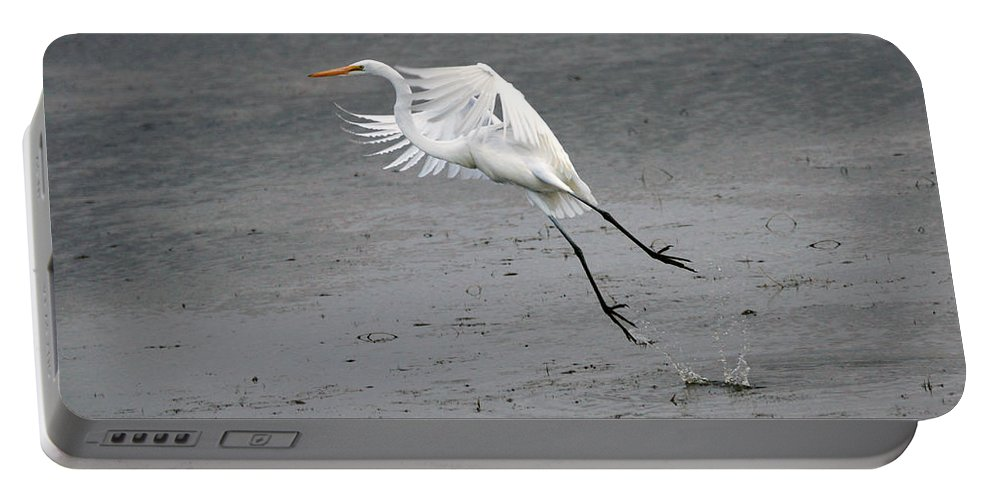 Egret Portable Battery Charger featuring the photograph Take Off by Lori Tordsen