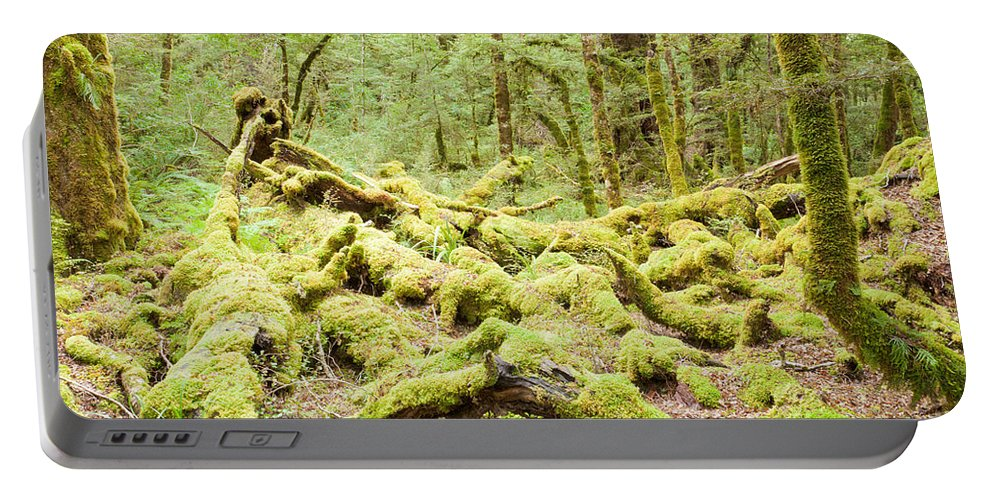 South Island Portable Battery Charger featuring the photograph Virgin Rainforest Wilderness Of Fiordland Np Nz by Stephan Pietzko