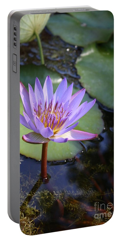 Purple Portable Battery Charger featuring the photograph Blue Water Lily by Irina Davis