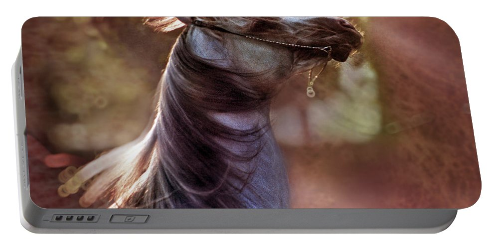 Horse Portable Battery Charger featuring the photograph Wild At Heart by Angel Ciesniarska