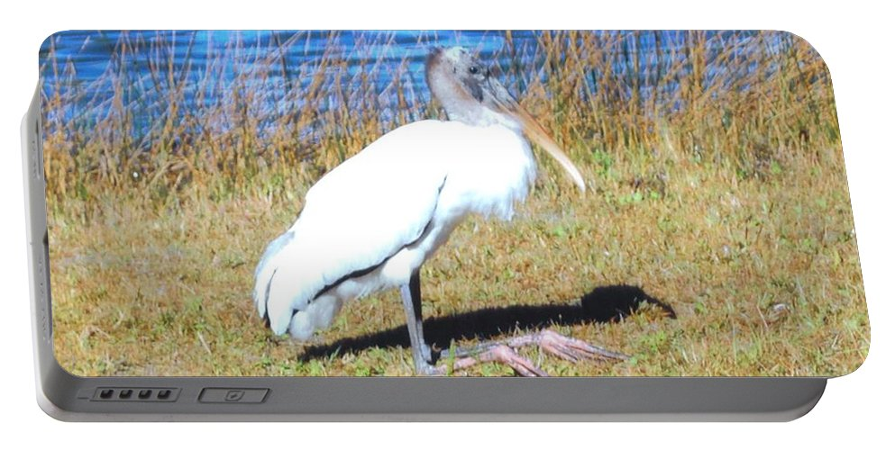 Resting On His Knees At Lakes Park In Ft.myers Portable Battery Charger featuring the photograph Woodstork by Robert Floyd