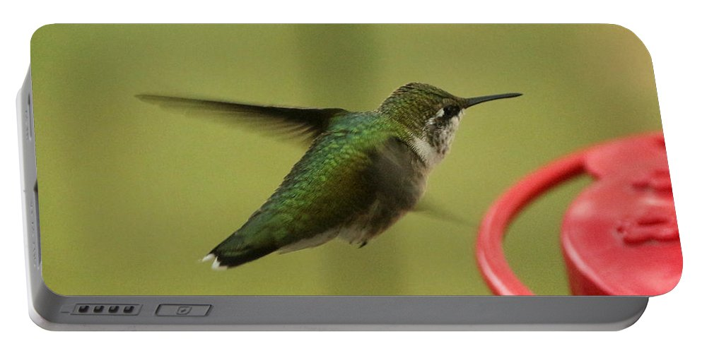 Ruby-throated Hummingbird Portable Battery Charger featuring the photograph Ruby-throated Hummingbird by Lori Tordsen