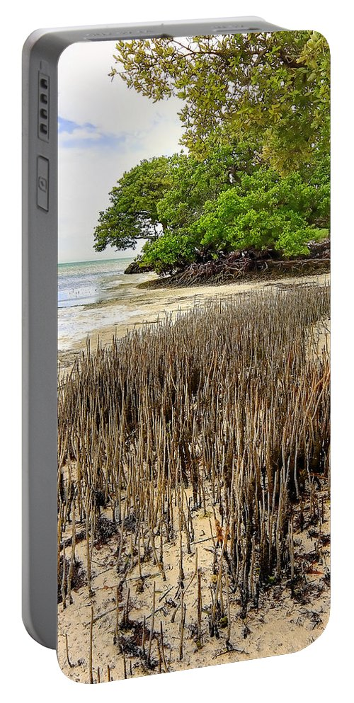 Florida Portable Battery Charger featuring the photograph Anne's Beach-2 by Rudy Umans